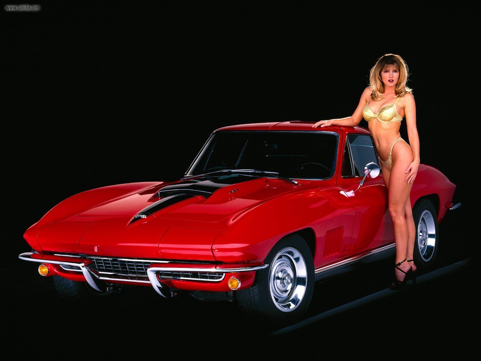 Corvette Stingray    on Muscle Car Hall Of Fame  1967 Corvette   First In